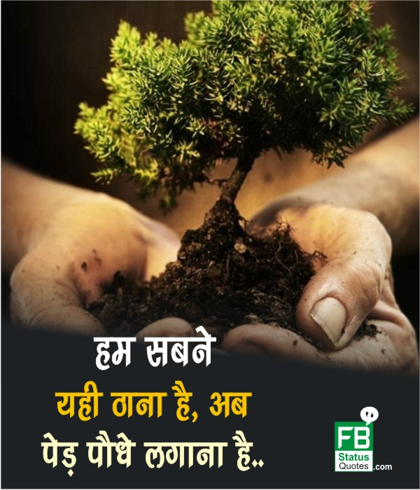 Great Save Trees Slogans