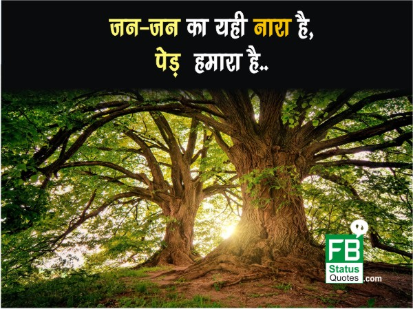 Save Trees pictures hindi