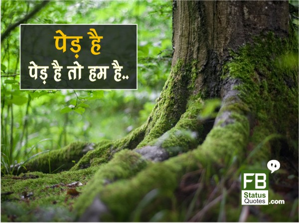 Save trees images