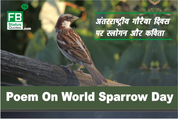 Poem On World Sparrow Day