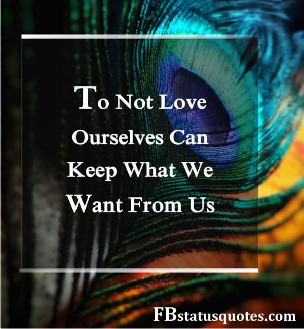 Law Of Attraction Quotes Love