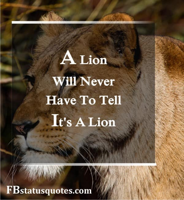 Lion Quotes For Strong Life