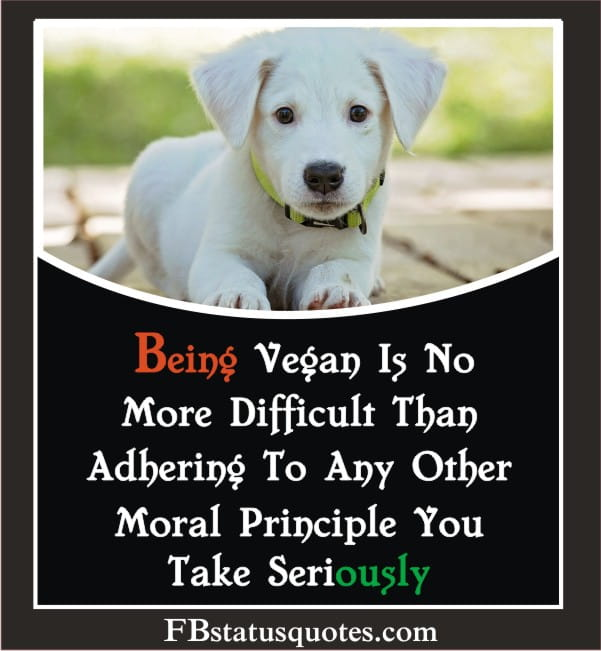 Quotes About Saving Animals