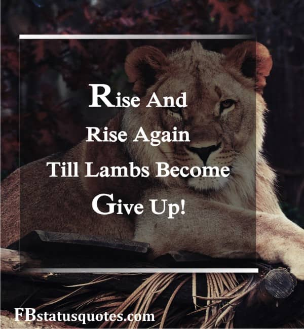 Rise And Rise Again, Till Lambs Become Lions