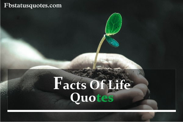 Facts Of Life Quotes