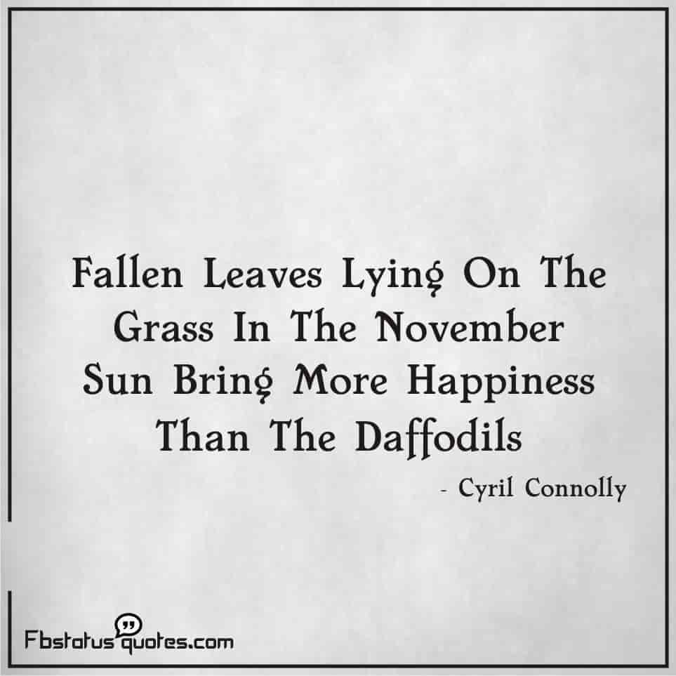 funny november quotes