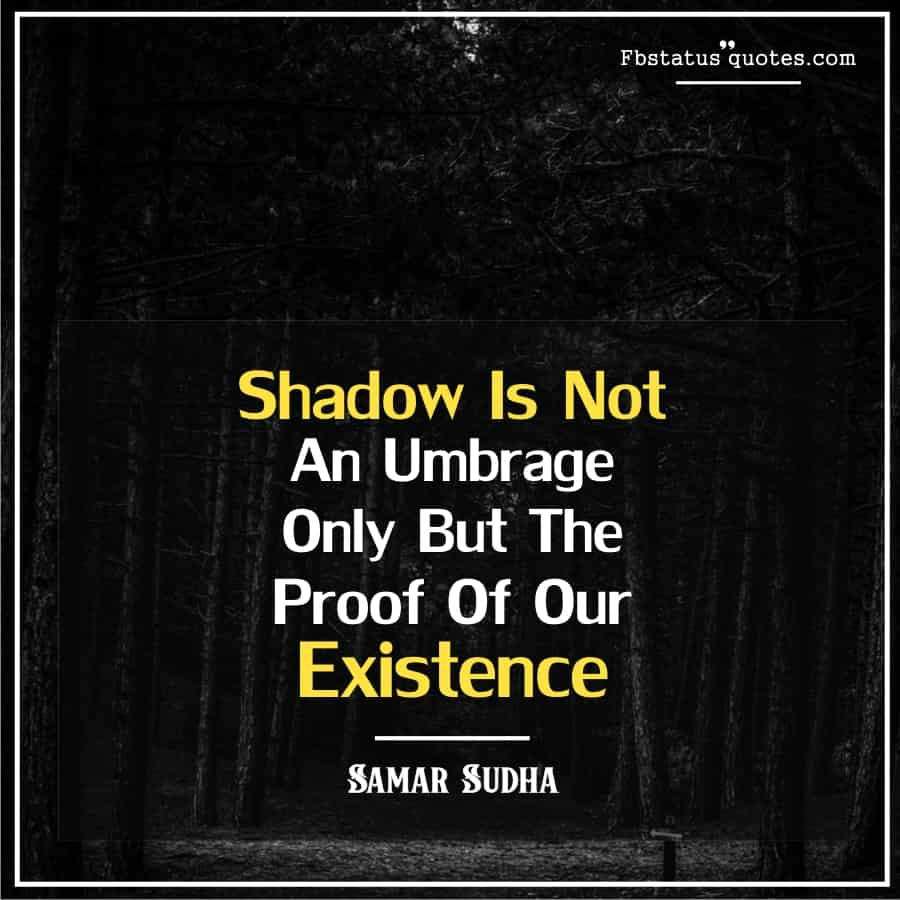 Funny Shadow Quotes