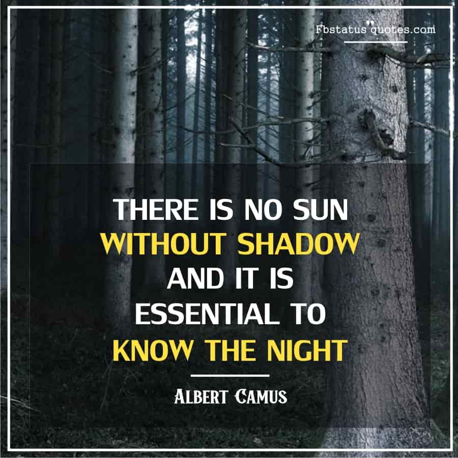 Shadow Quotes For love
