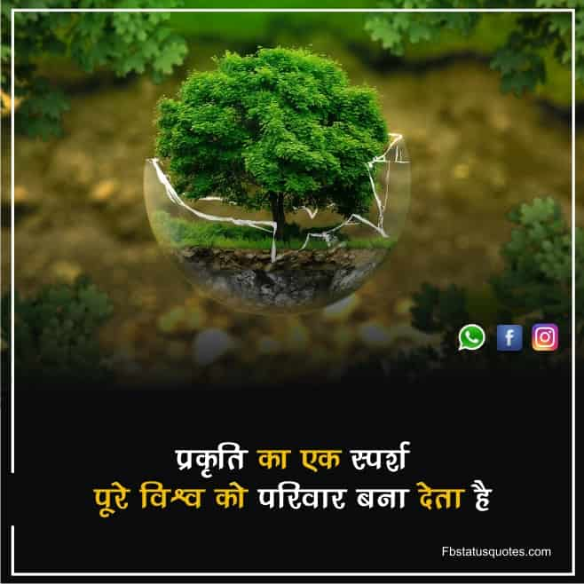 Nature And Peace Quotes