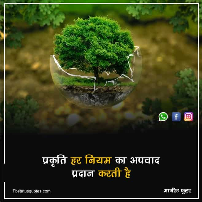 Save Nature Images In Hindi