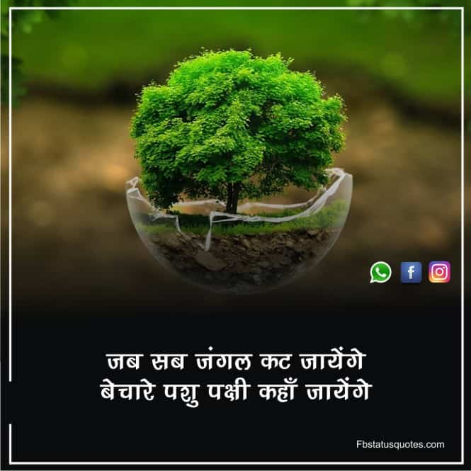 Thought Of Environment