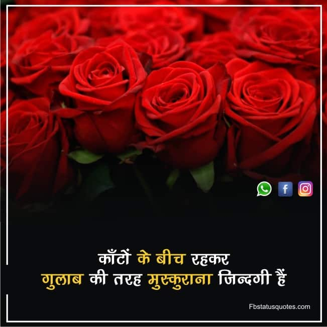 Top Happy Quotes In Hindi